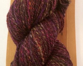 Autumn Colours 2 Hand Spun Worsted yarn