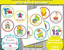 Printable Milestone Iron-ons, Circus Train Milestone Iron on, Set of 12 Month, Baby Milestone Stickers, Baby Milestone Iron Ons, Baby Animal