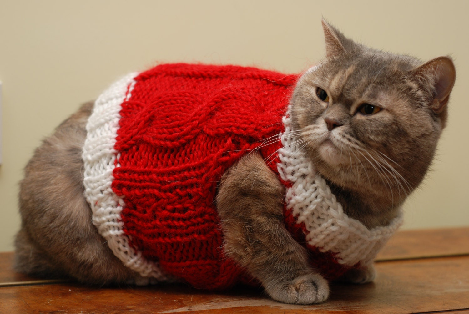 Christmas Cat Vest Red cat clothes Warm cat sweater Knit