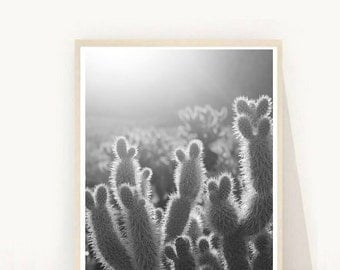 Cactus Print, Trending Now, Cactus Photo, Printable Art,  Minimalist, Cactus Wall Art, South Western,  Instant Download,