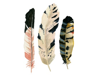"Feather Watercolor Print-""The MacGregor"" 5x7 Giclee print, Feather painting, Three feathers, Wall art, Nursery Decor, Housewarming"