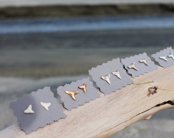 Shark Teeth Earrings Studs made in Charleston, SC-  Gold // Silver // White // Beachy Bridesmaids Gift // Coastal Wedding // Shark Week