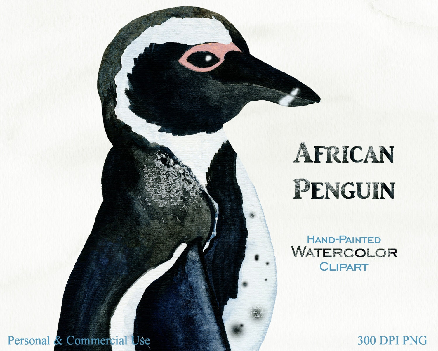 african penguin research paper Research-publishingnet has been established as a not-for-profit organisation since september 2010, and we are committed to making peer-reviewed research papers a.