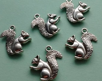 5 Squirrel Charms Silver - CS3050