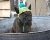 Cat Beanie, Cat Hat, Photo Prop, Crochet, Pure Cotton, Blue and Yellow, Pom Pom Beanie, Pet Beanie, Pet Hat, Pet Clothes, Winter Cat Beanie