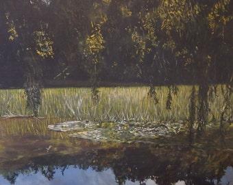 Summer Reflections on Lake Te Koutu