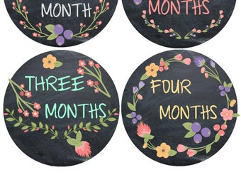 Milestone Stickers Baby Month Stickers Monthly Baby Stickers Photo Sticker Month by Month Baby Sticker Shower Gift Monthly Bodysuit Stickers