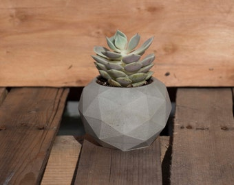 Geodesic Concrete Planter/ Minimalist Concrete Geodesic Planter Pot/ Concrete Planter/ hand cast minimal grey modern concrete decor