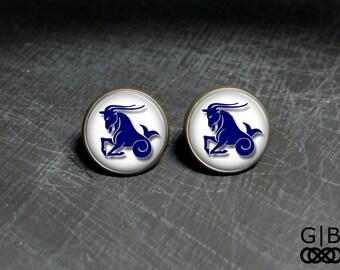 Capricorn Studs Earrings December Birthday Studs - Capricorn Birthday Studs January Studs Earrings Capricorn Studs December Birthday Studs