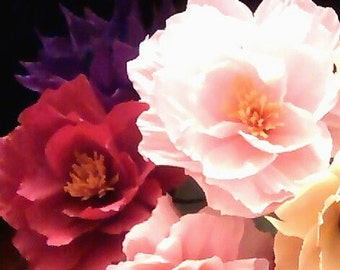 Peony Floral Stems