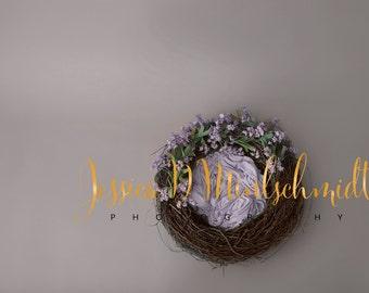 NEWBORN DIGITAL BACKDROP: Gray/Purple Floral Nest