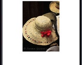 Straw Hat Adventures Straw Hats Summer Hats Beach Hats  Gallery Quality Print Ivory Black Red FREE US Shipping and Insurance