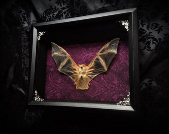 Real Bat Shadowbox - Bat Decoration - Taxidermy Bat - Halloween Decoration - Gothic Gift - Gothic Decor - Painted Bat - Oddity - Prop