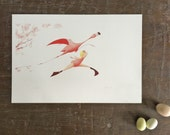 Flora and the Flamingo- Soar- Limited Edition Signed Print