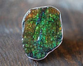 SOLD Dragon Skin Ring Ammolite
