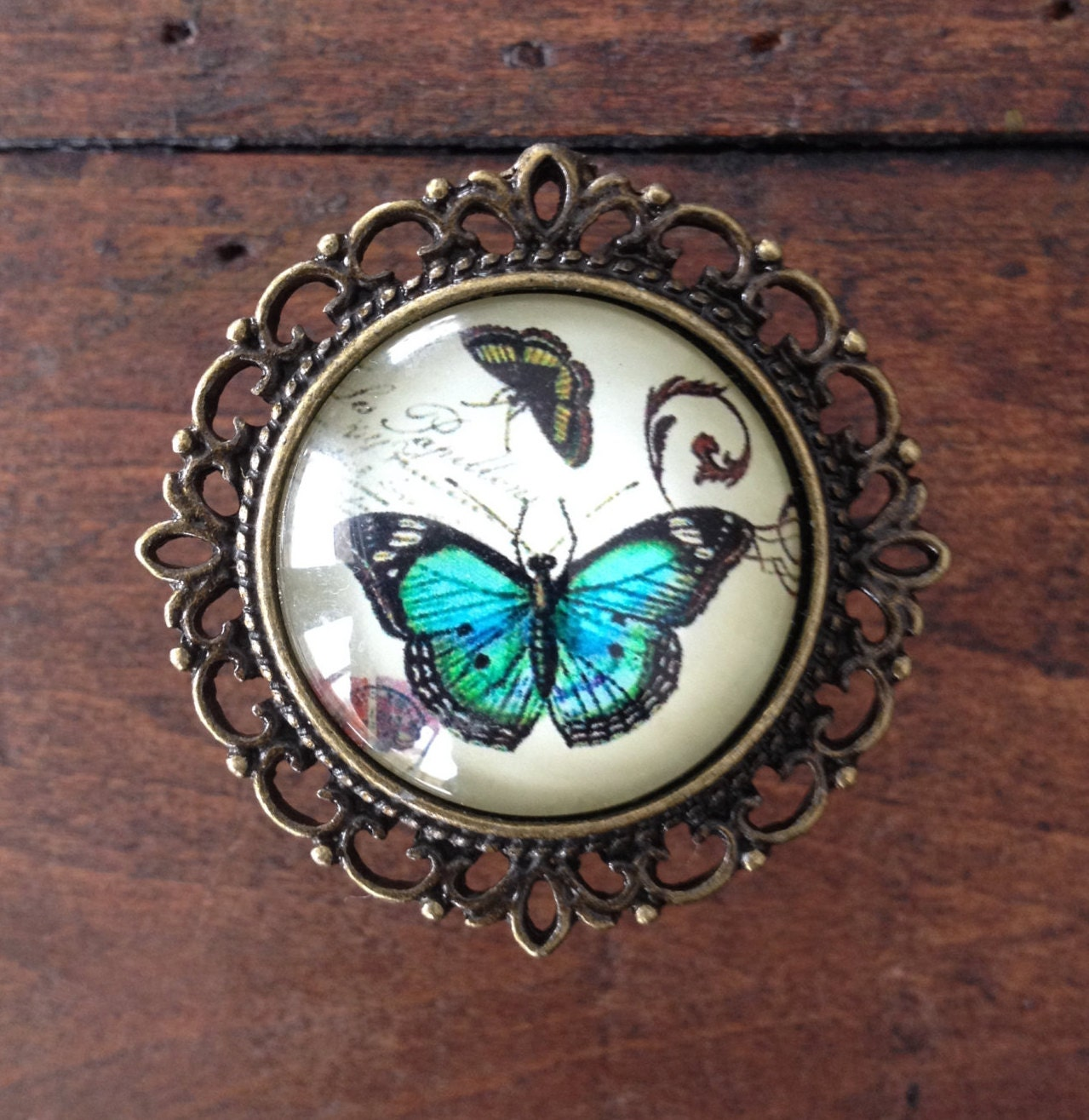 Butterfly Drawer Knobs Cabinet Knobs in Brass MK152 B