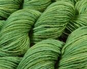 Hand Dyed Yarn - DK Weight Superwash Merino Wool Singles Yarn - Laurel - Knitting Yarn, Wool Yarn, Single Ply Yarn, Green