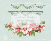 Vintage Garden Hibiscus Floral PNG Clip Art GARLANDs Transparent Background Instant Download