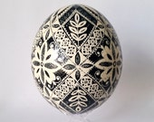by Katya Trischuk  Ostrich shell, Ukrainian Easter egg, hand painted black and white home decor, Christmas Easter gifts, retirement gift