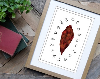 Harry Potter Print - Harry Potter and the Philosophers Stone