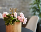 Script Table Numbers Set of 20