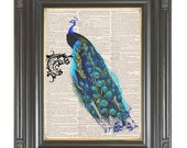 Peacock wall art Arabesque dictionary art print on dictionary or music page Digital art print COUPON SALE Sheet music print No. 497