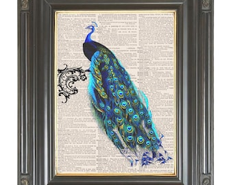 Peacock wall decor Arabesque dictionary art print on dictionary or music page Digital art print COUPON SALE Sheet music print No. 497
