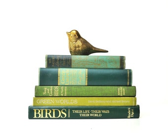 Vintage Bird and Nature Book Collection - Books Plates