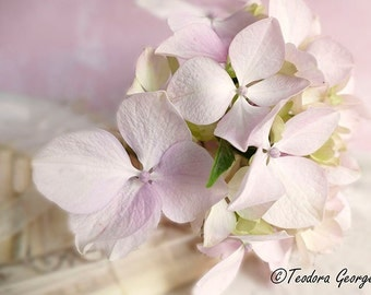 Purple and White Hydrangea in a Vase Photography, Botanical Photo, Garden Photo