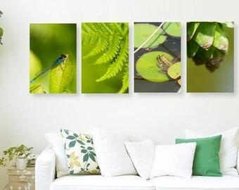 Woodland home décor, Nature photography, Green wall art, Fern photography, Frog photography, Dragonfly photo, Set of 4 prints, Zen art,