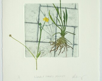 Botanical print. Urban weeds. Collagraph with mono print