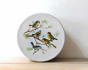 Song bird vintage metal box / round storage tin / bird decor box / country cottage chic home / nature decor / rustic woodland cabin decor