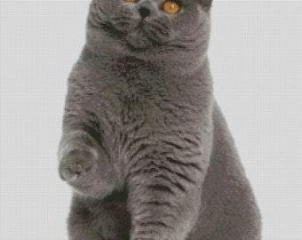 British Shorthair Cat Cross Stitch Pattern 001