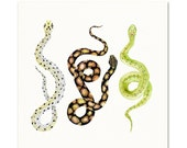 Print of my original Watercolor Snakes.