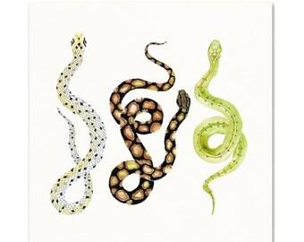 Watercolor Snakes Art Print. Green Snake Painting. Nature Wall Art. Garden Art. Serpent Art Print. Tribal Snake Watercolor Art. Kids Decor.