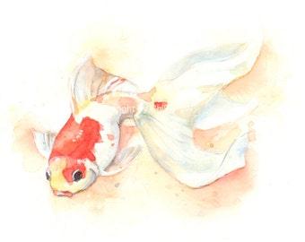 Fish, fish print, giclee print, watercolor, original painting, fine art giclee print, wall art, Goldfish, watercolor giclee print