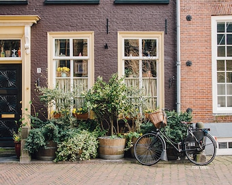 Bicycle Parked, Europe Travel Photography, Charming Garden, Bike with Basket, Delft, The Netherlands, Delft Style, Warm, Rustic, Cottage