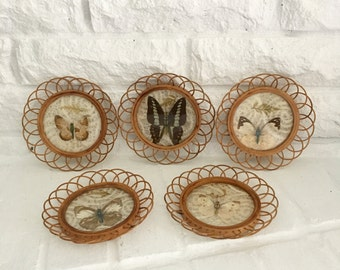 vintage pressed butterfly coasters glass wicker boho decor