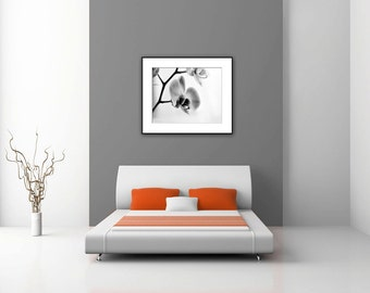 Bedroom Wall Decor, Black and White Photography, Floral Photography, Orchid Photograph, Modern  Wall Art Print