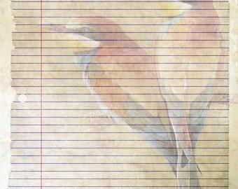 Bird writing paper