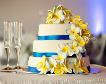 Frangipani Plumeria Cake Topper, Cake Picks x 6 Lots of Colour Options