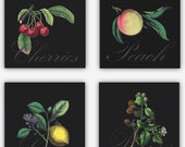 Kitchen Art Set of 4 Prints • Large Wall Art Arrangement Featuring Vintage  Style Fruit Illustrations