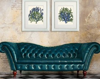 Coral Prints - Set of 2 Blue and Green Coral art prints coral beach decor  coral decor coral home decor Decorative art blue green room decor
