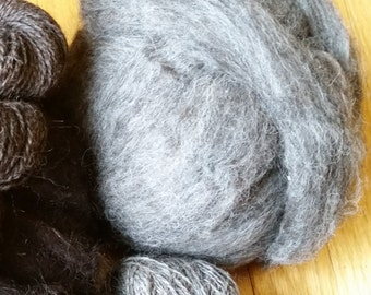 Llama Wool Roving for Spinning ~ Beautiful Silver Gray ~ Professionally Cleaned  ~ All Natural ~ Stunning Color