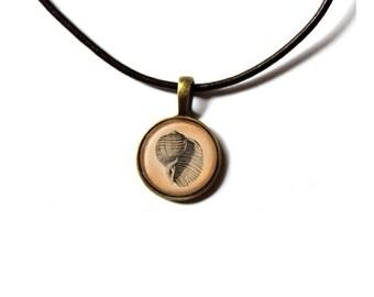 Nautical necklace Seashell jewelry Marine pendant NWR214