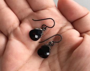 Briolette Earrings, Niobium Earrings, Black Earrings, Black Niobium Earrings, Hypo Allergenic Earrings, Small Dangle Earrings
