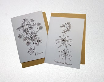 Card with black and white illustration of herbs from my garden. Folded, blank inside, with envelope.
