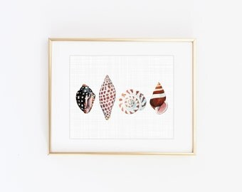 Watercolor seashell art print - Minimalist beach decor - Coastal wall art - Printable seashell art - Watercolor art prints - Beach print