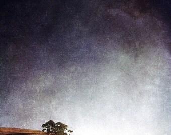 Landscape - California Hillside - When the Trees Came for Dinner - Fine Art Photograph