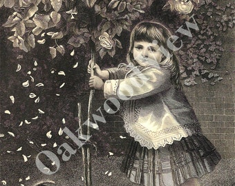 Playmates Engraving, Pretty Little Girl Shaking a Tree, Cat, Antique 1879 Art Print, FREE SHIPPING